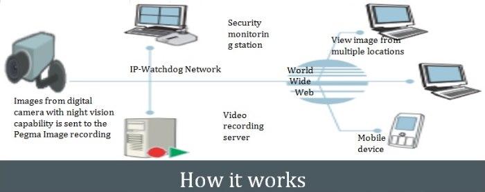 IP-Watchdog Surveillance